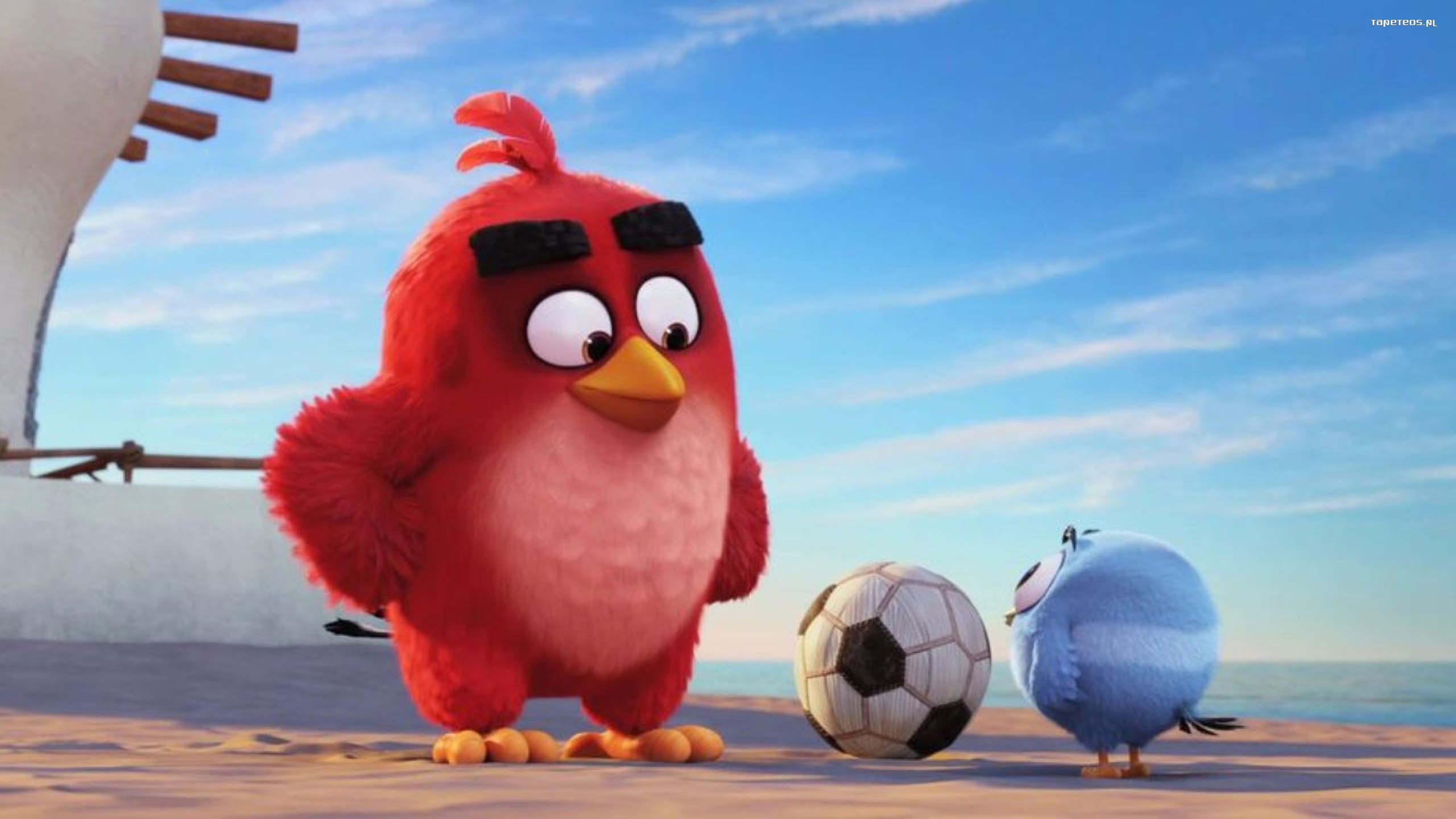 Angry Birds Film (2016) 014 Red