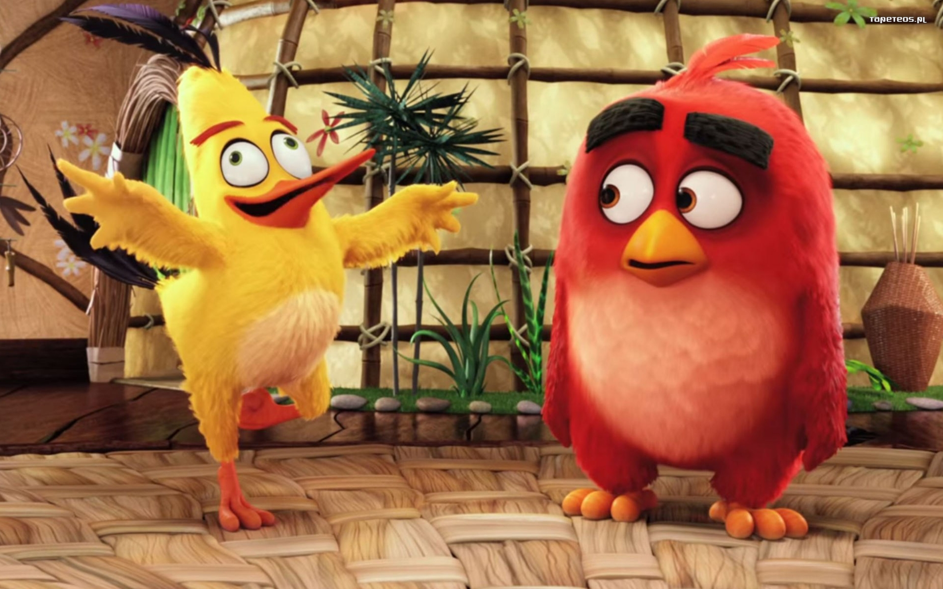 Angry Birds Film (2016) 018 Chuck, Red