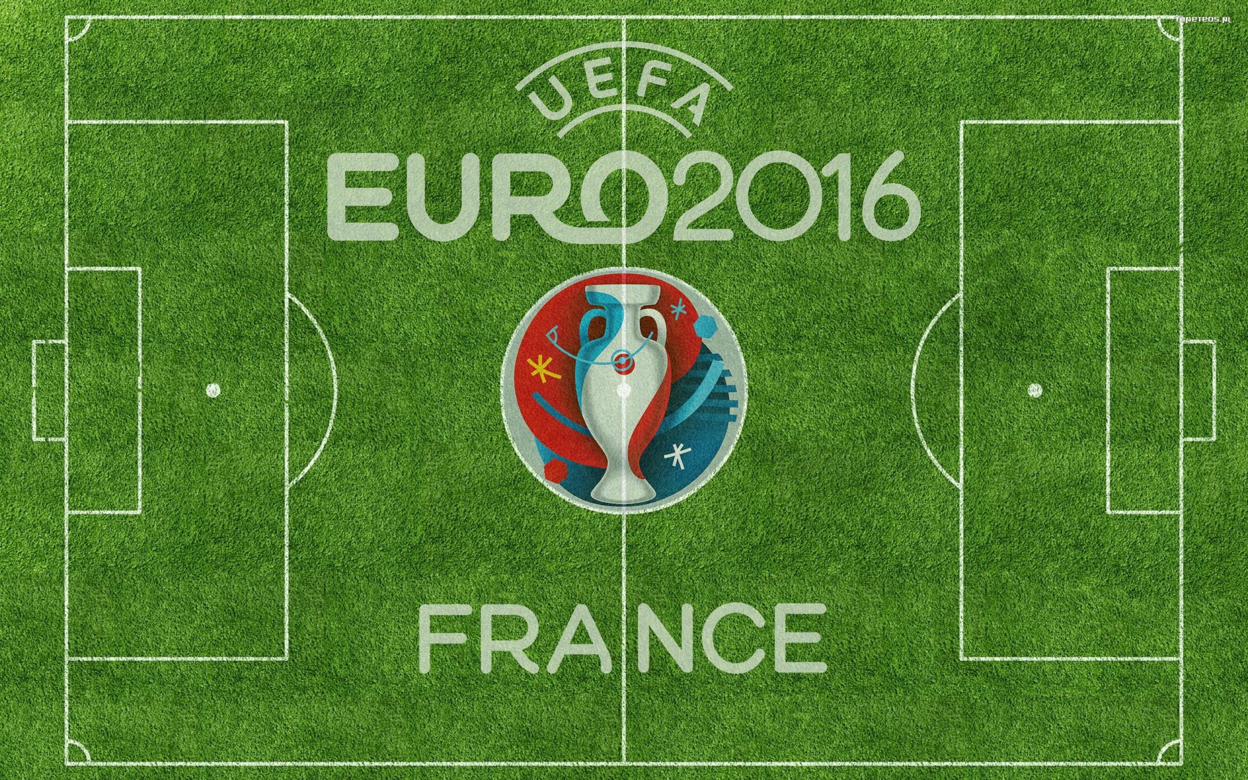 uefa euro 2016 francja 006 logo boisko tapety na pulpit. Black Bedroom Furniture Sets. Home Design Ideas