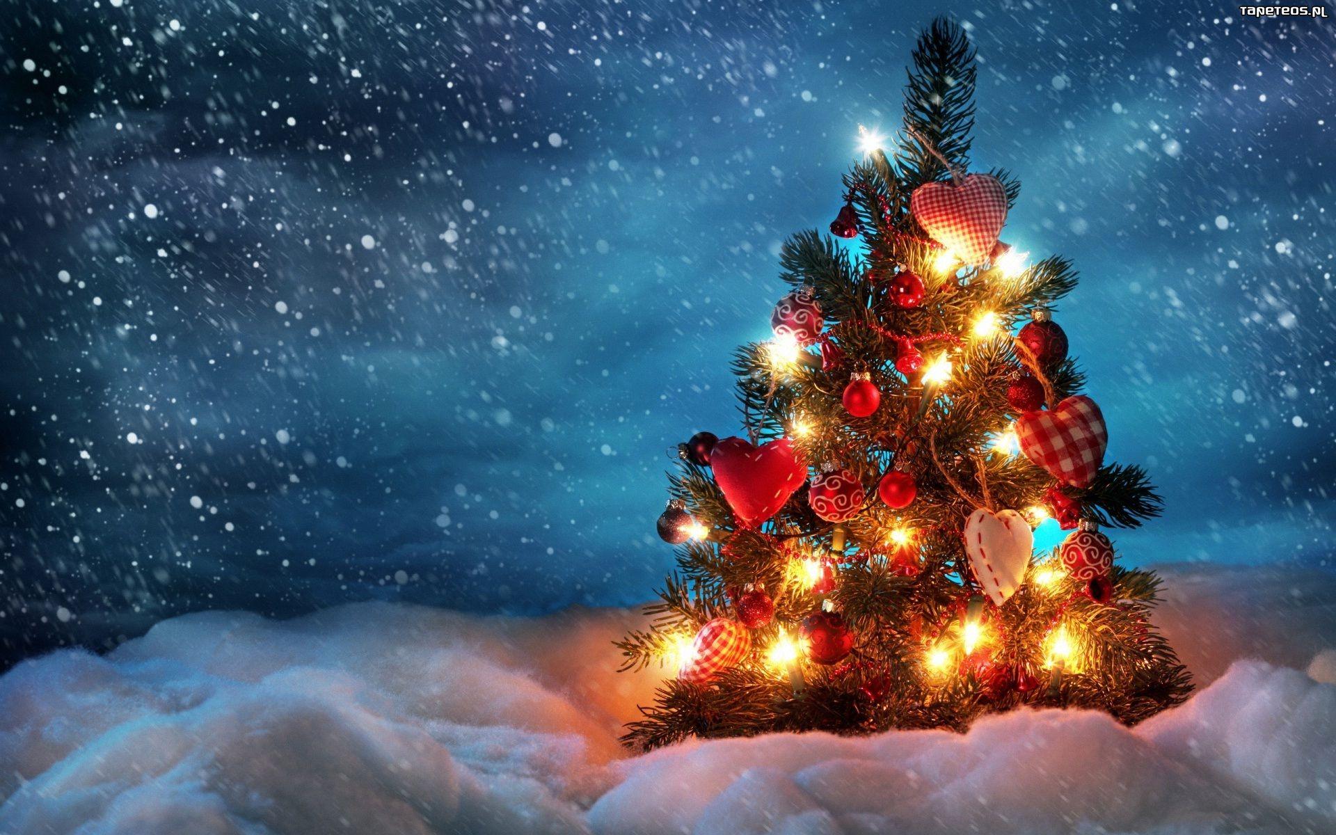 Świąteczne życzenia od Historii Odry Opole