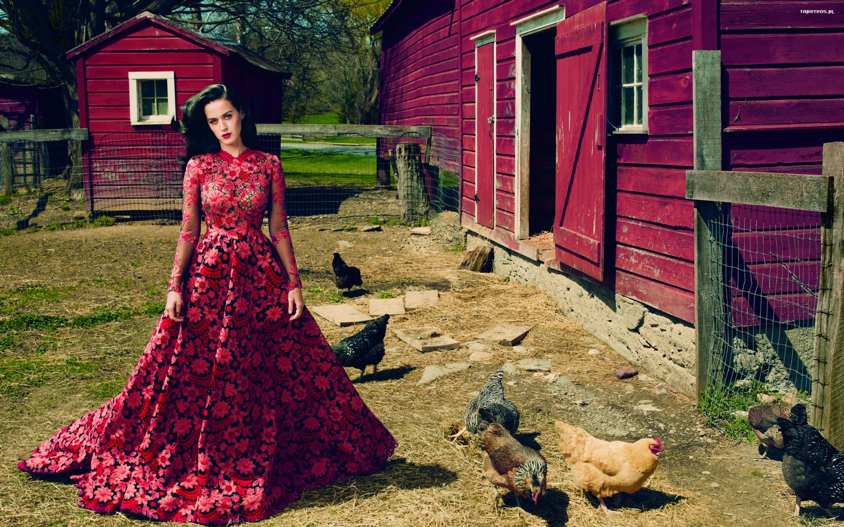 Katy Perry 041