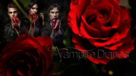 Pamietniki wampirow, The Vampire Diaries 003