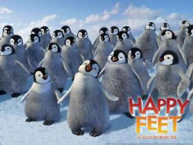 Happy Feet Tupot malych stop (4)