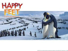 Happy Feet Tupot malych stop (7)