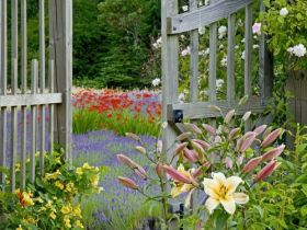 Garden Gate, Bainbridge Island, Washington