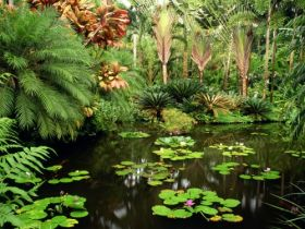Hawaii Tropical Botanical Gardens, Hawaii