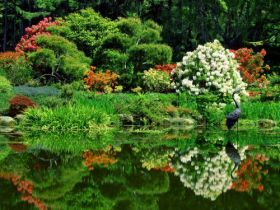 Oriental Garden, Shore Acres State Park, Oregon