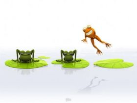 Funny 3D Animals Wallpapers 19