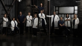 Chirurdzy, Greys Anatomy 045