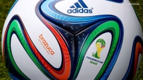 Fifa World Cup Brazil 2014 021 Pilka