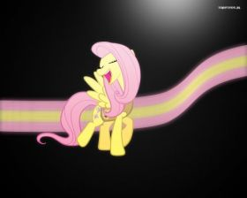 My Little Pony Przyjazn To Magia 016 Fluttershy