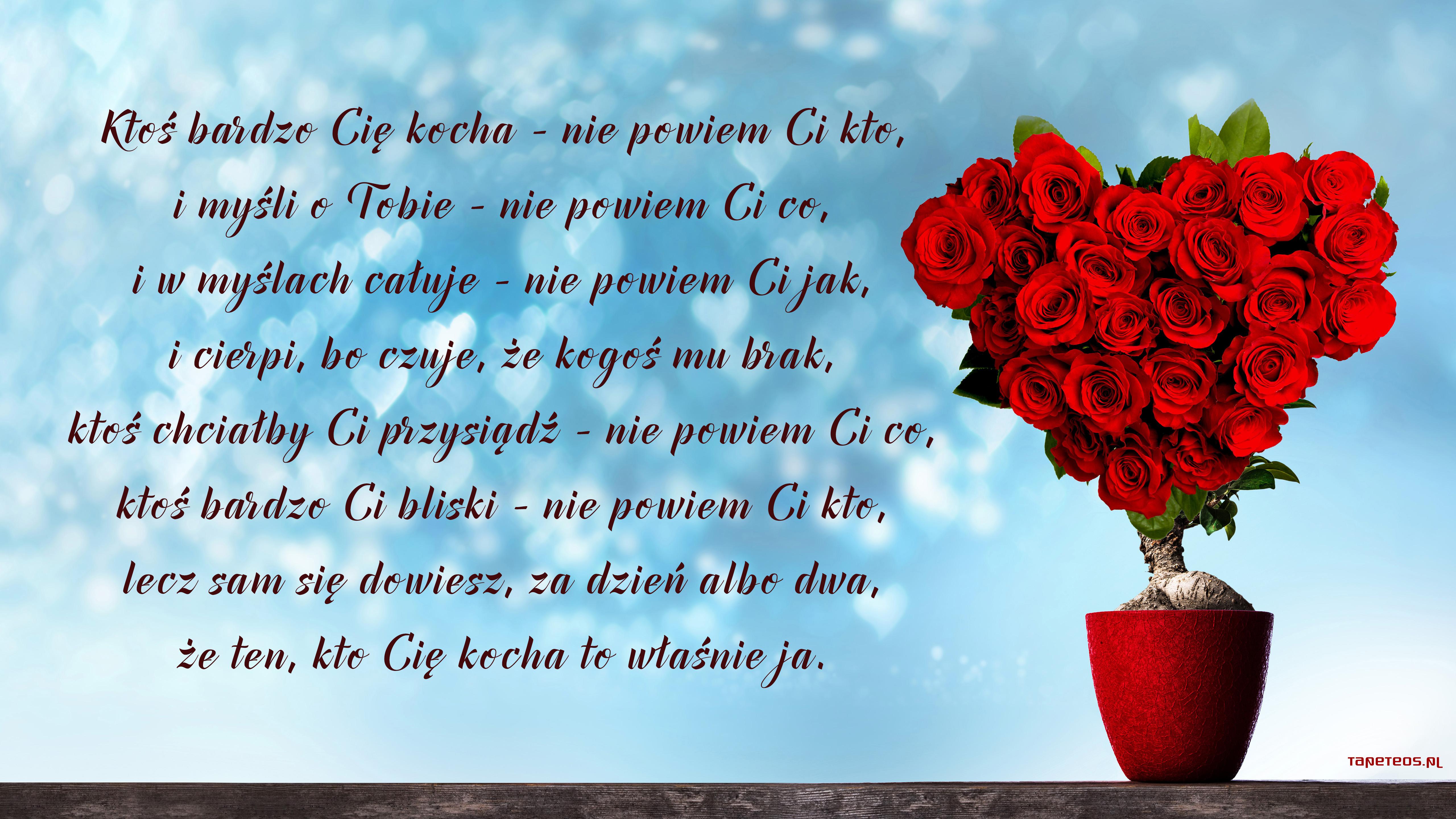 Walentynki Milosc 1459 Czerwone Roze Doniczka Wiersz