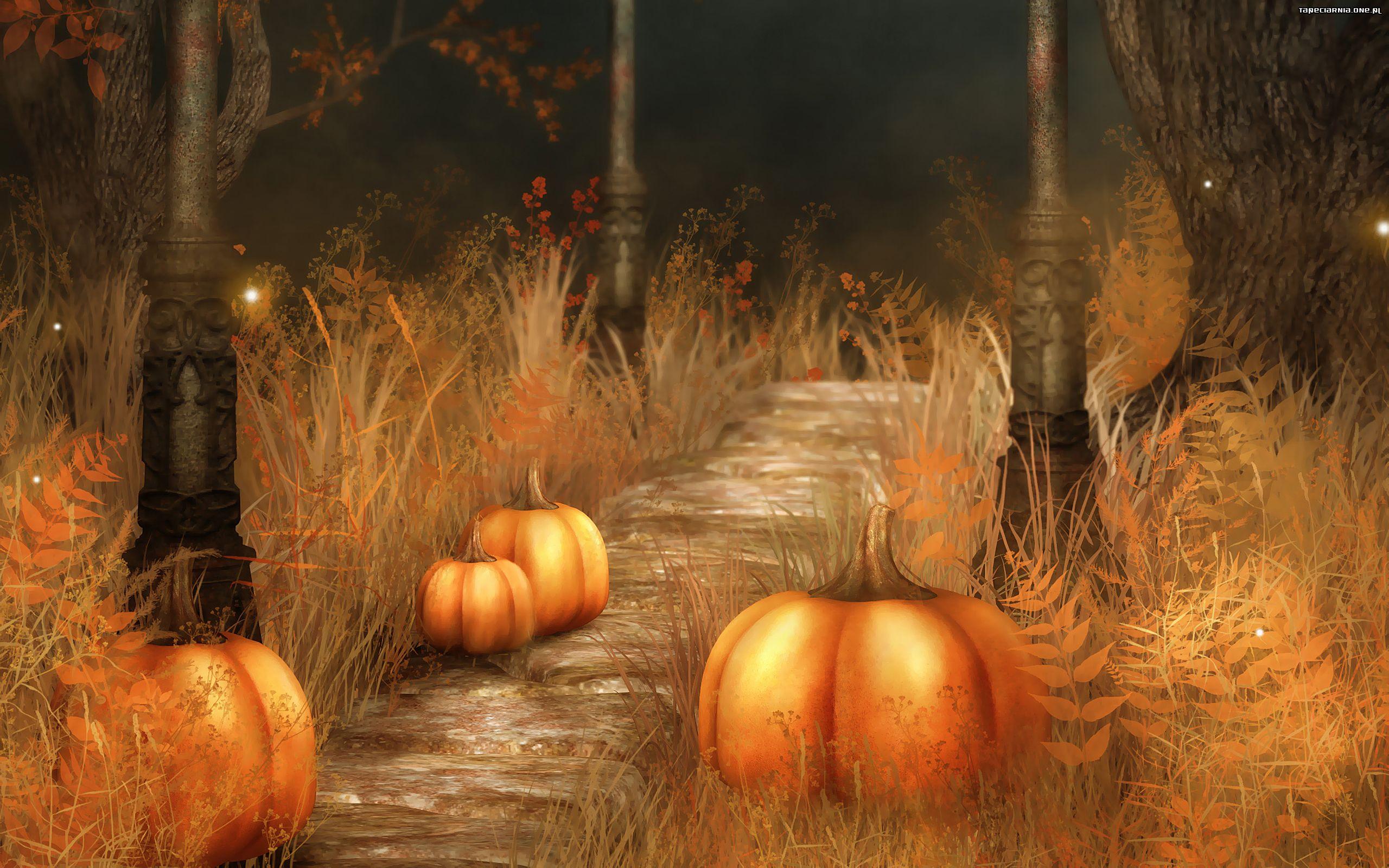 тыква Хэллоуин фон загрузить